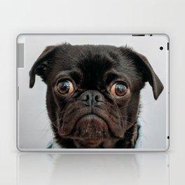 Pug Got Style Laptop & iPad Skin