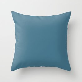 Pratt and Lambert 2019 French Blue 24-12 Solid Color Throw Pillow