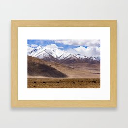 Tibet landscape with yaks Framed Art Print