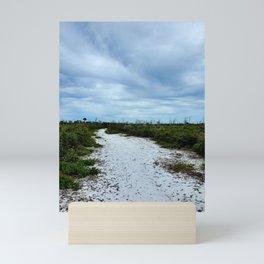 Florida sand pine scrub Mini Art Print