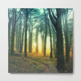 Radiant Forest Metal Print