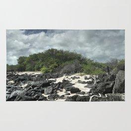sand and rocks of the Galapagos Rug