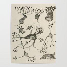 Neuron Cells Poster