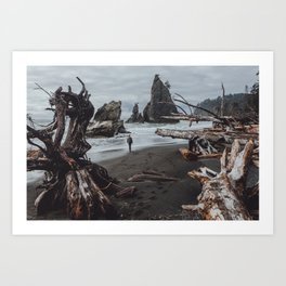 Olympic Coastline Art Print