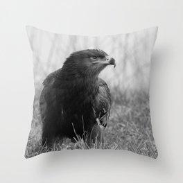 Young Common Buzzard B&W Throw Pillow