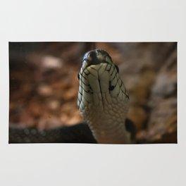 Snake Tongue Rug