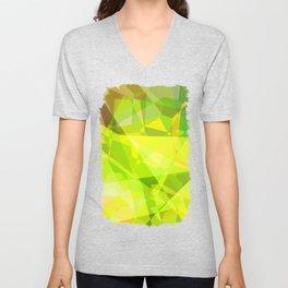 Cactus Garden Abstract Polygons 3 Unisex V-Neck