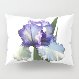 Iris 'Freedom Song' on white Pillow Sham