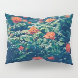 Twilight Roses - Moody Florals Pillow Sham