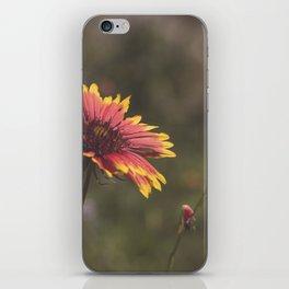Texas Wildflower iPhone Skin