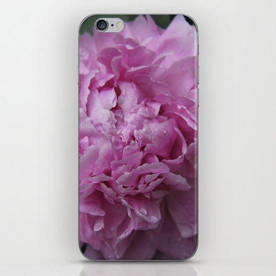 Pink Peony  iPhone & iPod Skin