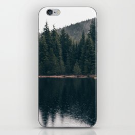 Forest Lake iPhone Skin