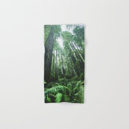 Redwood National Park- Pacific Northwest Nature Photography Hand & Bath Towel