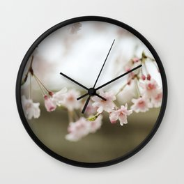 Blush Pink Cherry Blossoms on Brown Wall Clock