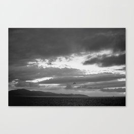 SeaBirds In Flight: Santa Barbara Seascape With Storm Clouds In Black And White Canvas Print