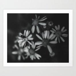 matte finish art prints society6
