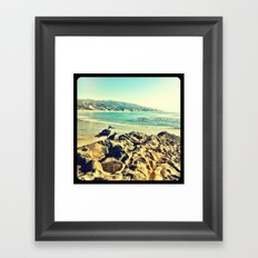 Birds at the beach. Framed Art Print