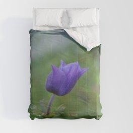Lone Blue-Purple Anemone Comforters