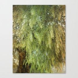 Green Tree. Vegetal Photography Canvas Print
