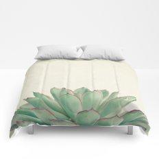 Echeveria Comforters