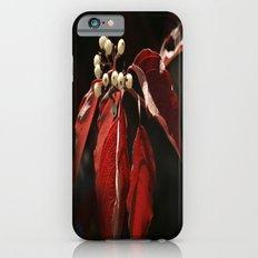 Berries iPhone 6 Slim Case
