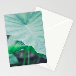 Paradise 04 Stationery Cards
