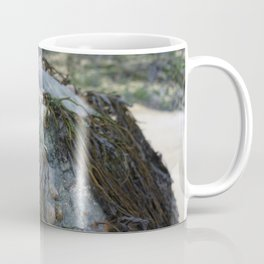 Natural Blue Rock with Limpets and Seaweed Coffee Mug