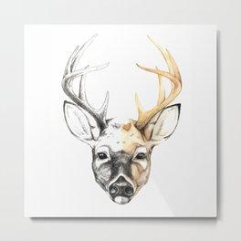 Dear Deer Metal Print