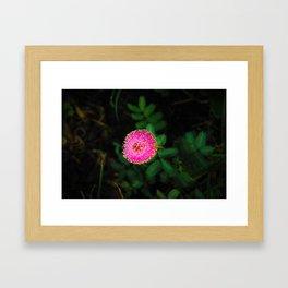 purple flora Framed Art Print
