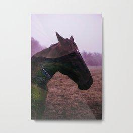 Horse dream Metal Print