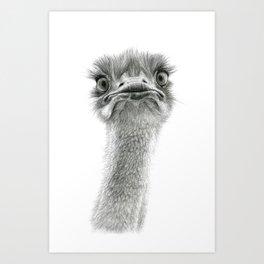 Cute Ostrich SK053 Art Print