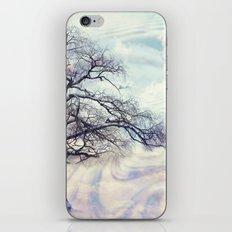 Winter Symphony iPhone & iPod Skin