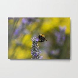 The Bees Knees Metal Print