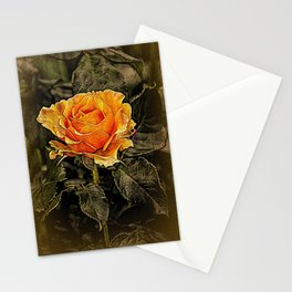 Orange Rose in oils Stationery Cards