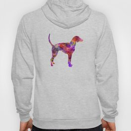 American Foxhound in watercolor                   Hoody