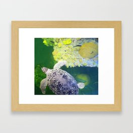 Sea Turtle on Lime Green Framed Art Print