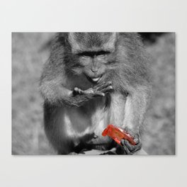 Jam Thief Canvas Print