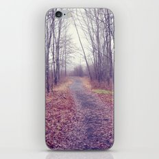 lead me home iPhone & iPod Skin
