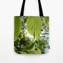 Sunlight Canopy III Tote Bag