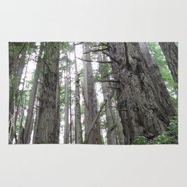 Redwoods, Forest, Trees Rug