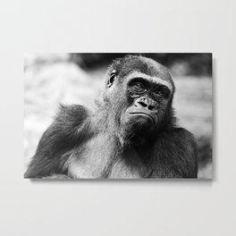 Gorilla at the Bronx Zoo Metal Print