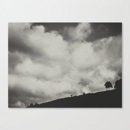 Little tree Canvas Print