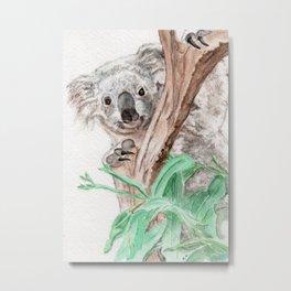 Koala Peek-A-Boo Metal Print