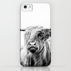 portrait of a highland cow Slim Case iPhone 5c