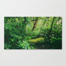 Site No. 26 Canvas Print