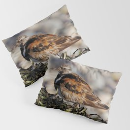 Ruddy Turnstone on Seaweed Mountain at the Beach Pillow Sham
