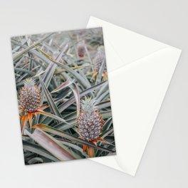 Maui Gold Pineapple Fields, Maui, Hawaii #6 Stationery Cards