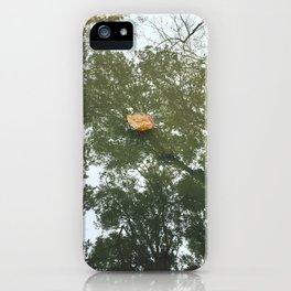 Bear Valley iPhone Case