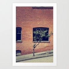 Tree on a Hill Art Print