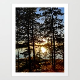 Evening serenity of the nature Art Print
